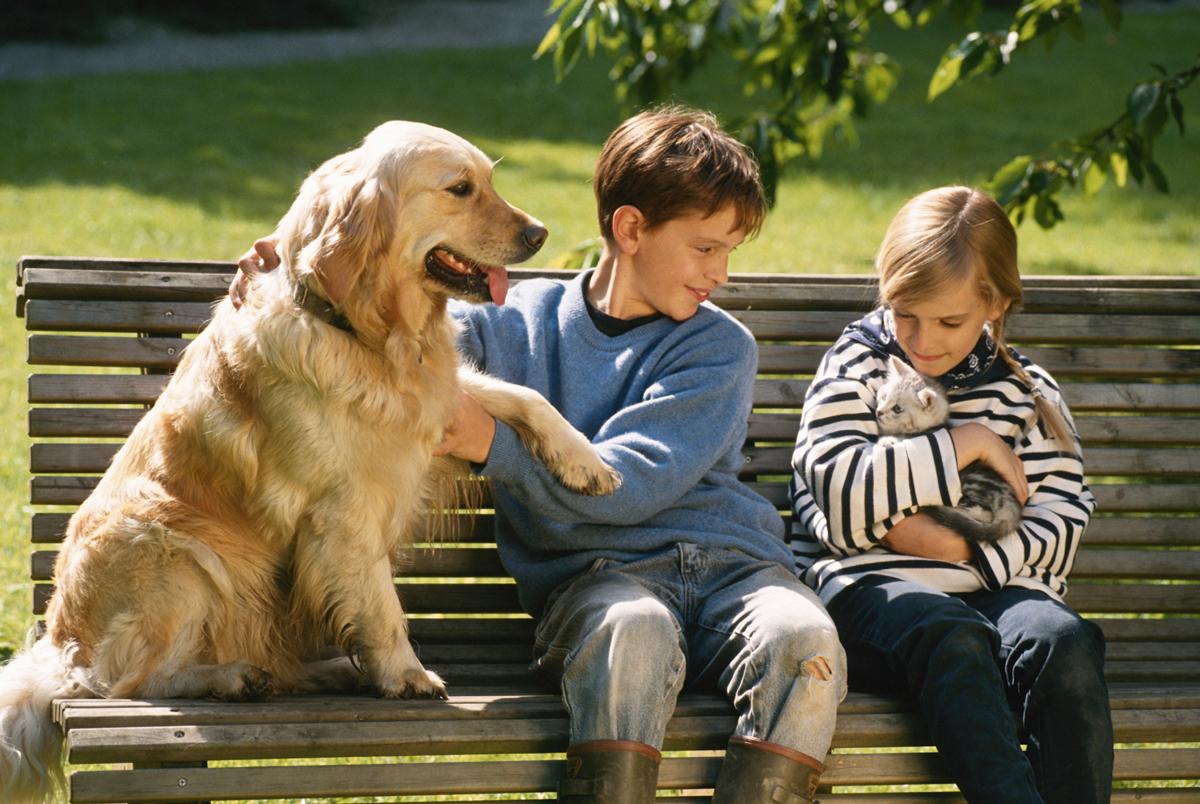 kid and pet bond